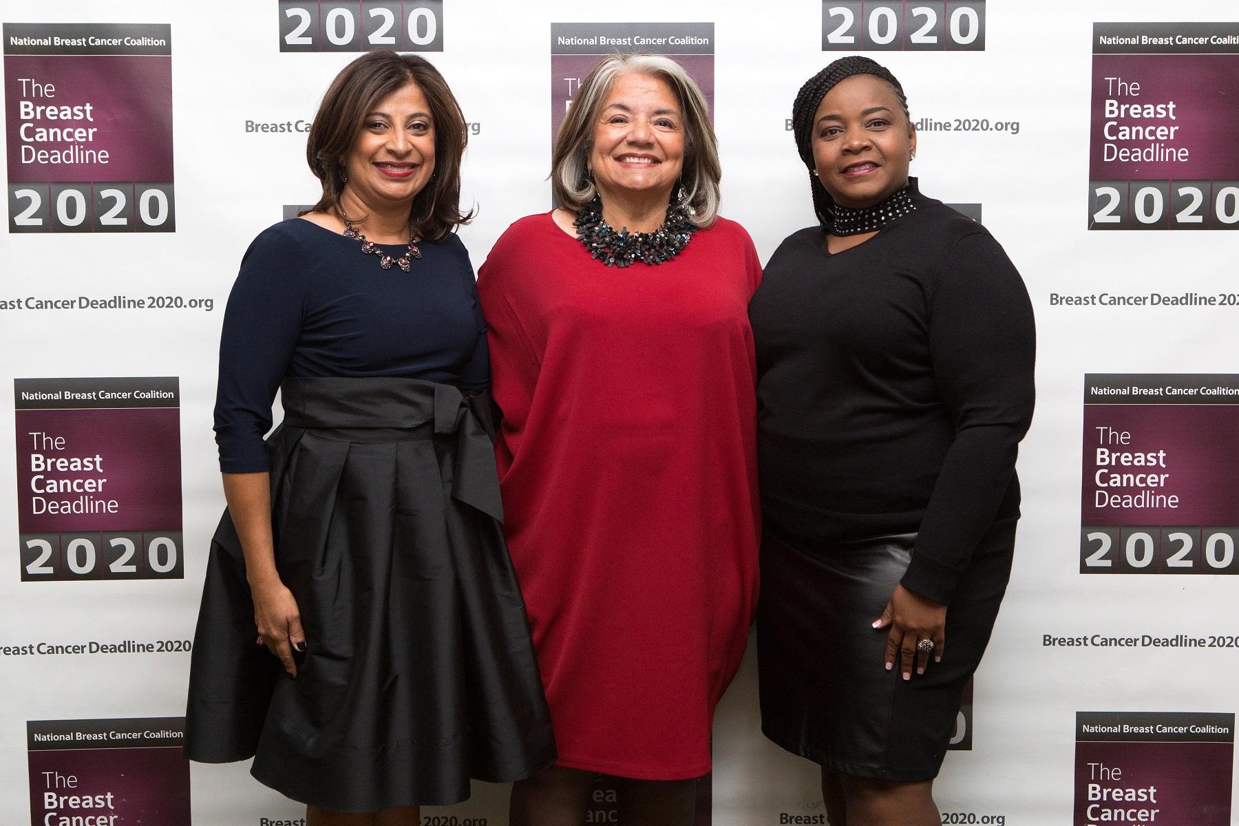 2017 Gala Advocates, NY Gala, Advocates